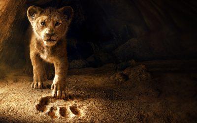 Alumni Work on Disney's Lion King